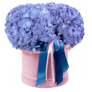 Цветы в коробке «Индиго»