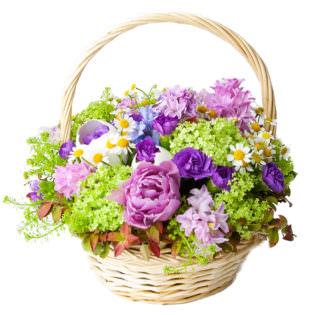 Цветы в корзинке с ромашками
